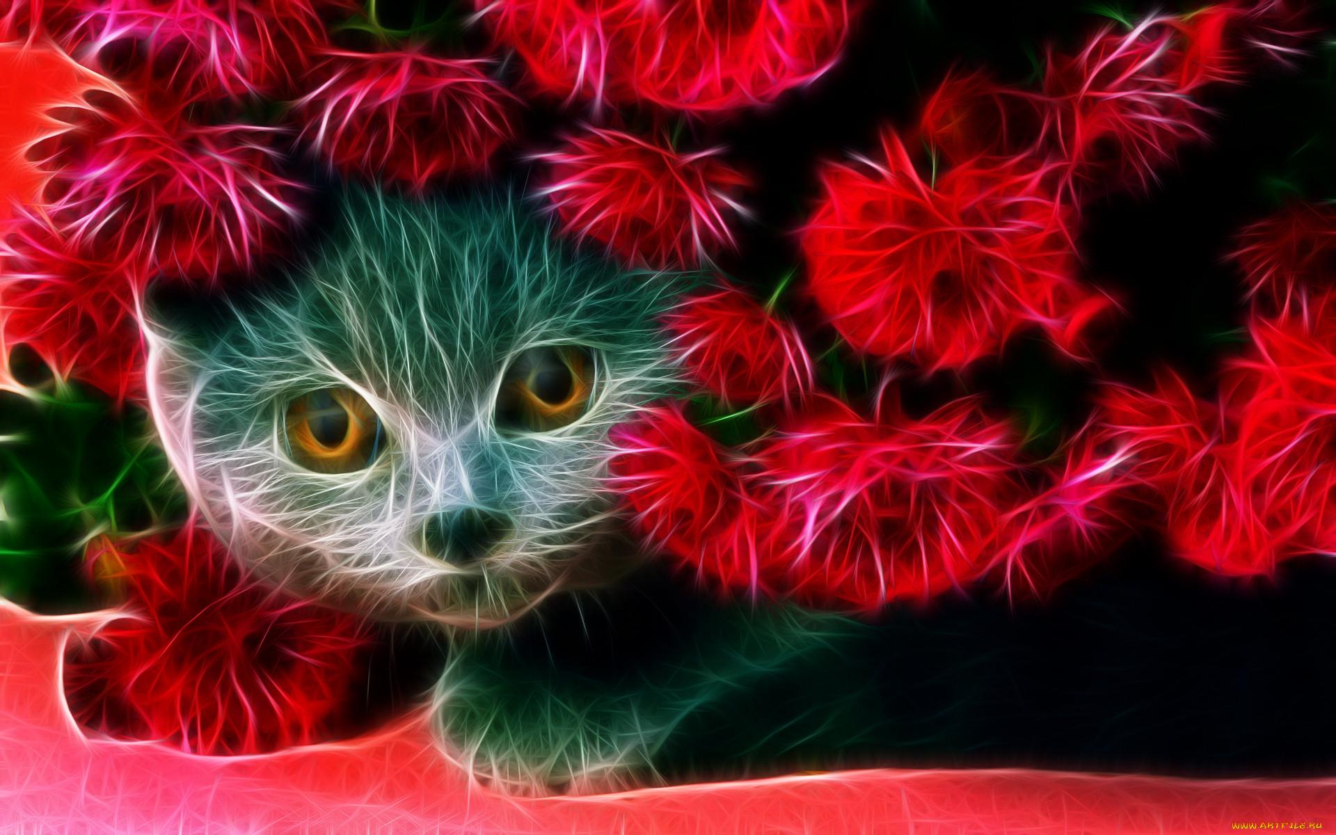 картинки на телефон движущиеся животные кошки надо